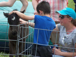 Photo small petting zoo